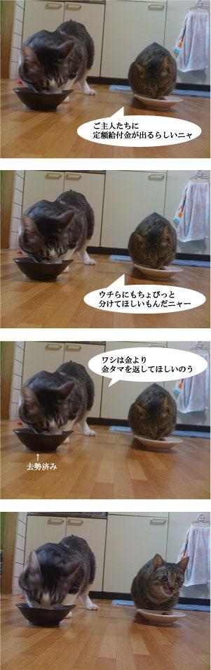 cat0021